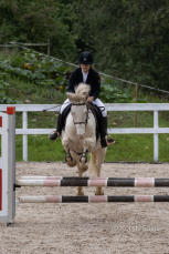 Eesti hobuste MV 2021. Hobune Aasta