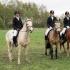 Hobuparaadil osalenud eesti hobused (vasakult): Tiritam, E-Tibu, Renegat ja Resta. Foto: Ago Ruus