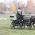 Mariliis Õunapuu hobusega Roona.