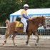 Eesti hobune pakub huvi eriti lastele.