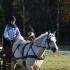 Katrin Kivihall ja Mariliis Õunapuu, hobune on Rosetta.
