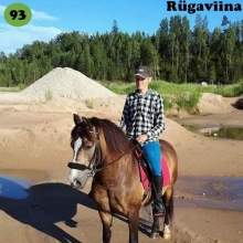 Rügaviina on sündinud 2010. aastal Jõgevamaal, i. Rikoshet, e. Amoora, kasvataja Katrin Kaalep, omanik Daisi Hurt.  Rügaviina saabus praeguse omaniku juurde viieaastasena. Suvel panid tüdrukud ta sadulasse. See kulges suhteliselt lihtsalt ja varsti sai koos teiste hobustega maastikule minna. Ühele tüdrukutest hakkas tema malbe loomus meeldima ning ta rentis Rügaviinat umbes aastakese. Siis tuli mära koju ja perenaine katsetas temaga ratsutamist. Kuna see oli väga hea ja turvaline, siis sai temaga käidud ka poes ja isegi tööl. Karjamaal meeldib Rügaviinale olla shetlandi ponide seltskonnas, ta lausa naudib nende juures olemist. Nüüd plaanitakse Rügaviinale varssa, et nii head iseloomu edasi pärandada.