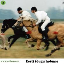 Roosi (1990-2013), i. Rips, e. Tulda, kasvataja Peep Pärisoo.   Roosi on tänapäeva eesti hobuse populatsioonis suure mõjuga märaperekonna alustaja. Roosi jättis tõule tunnustatud sugutäkud Rodeo (i. Roman), Aiken (i. Anakee), Teik (i. Tommi), Rasmus (i. Rosett), Rajur (i. Rosett), Repriis (i. Raksel) ning märajärglased Adeelia (i. Ando) ja Abeelia (i. Ando), kes omakorda on andud tõule kõrgelt tunnustatud järglasi.  Märajärglane Amanda on aga näidanud ebaharilikku võimekust kestvusratsutamises . Roosi on kantud ka igaveseks filmiajalukku kui osatäitja filmis